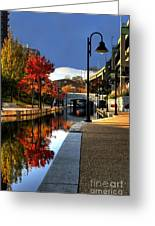 Fall Colors Along The Canal Greeting Card by Tim Wilson