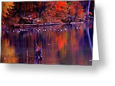 Fall Colors And Geese Greeting Card