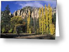 Fall Colors And Red Rocks Near Cave Greeting Card