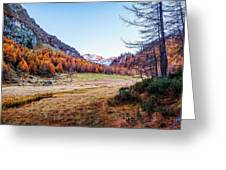 Fall Colors At Alpe Devero Greeting Card