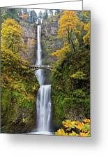 Fall Colors At Multnomah Falls Greeting Card