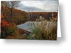 Fall Colors At The Reservoir Greeting Card