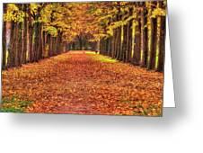 Fall Colors Avenue Greeting Card