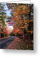 Fall Colors Backroad Greeting Card