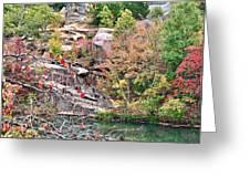 Fall Colors In Depth Greeting Card