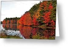 Fall Colors In Madbury Nh Greeting Card