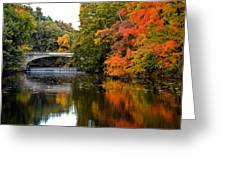 Fall Colors In New York State Greeting Card