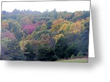 Fall Colors In Rockbridge County Greeting Card