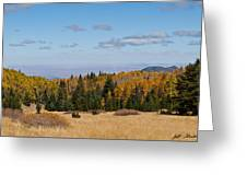 Fall Colors In The Inner Basin Greeting Card