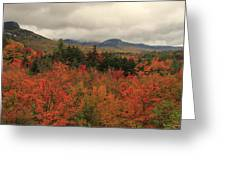 Fall Colors In White Mountains New Hampshire Greeting Card