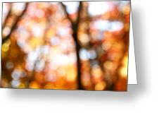 Fall Colors Greeting Card by Les Cunliffe
