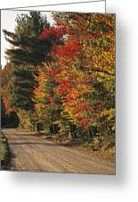 Fall Colors Line A New England Road Greeting Card by Heather Perry