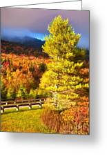 Fall Colors On Grandfather Mountain Ap Greeting Card
