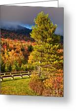 Fall Colors On Grandfather Mountain Greeting Card
