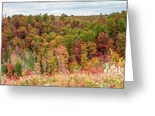 Fall Colors On Hillside Greeting Card