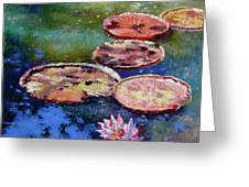Fall Colors On The Pond Greeting Card