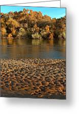 Fall Colors On The Rio Grande 1 Greeting Card