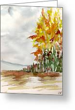 Fall Colour No. 1 Greeting Card