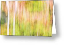 Fall Colours Abstract, Oxtongue River, Algonquin Highlands Greeting Card