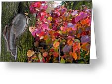 Fall Composition Greeting Card