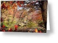 Fall Creek Greeting Card