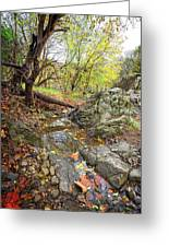 Fall Creek View Greeting Card