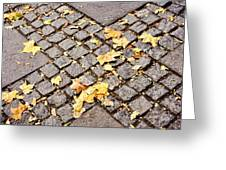 Fall Crossroads Greeting Card by JAMART Photography