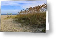 Fall Day On Tybee Island Greeting Card