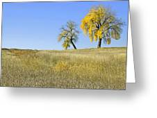 Fall Days In Fort Collins Co Greeting Card