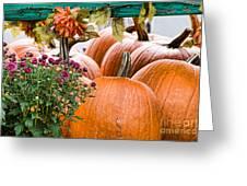 Fall Display Greeting Card
