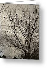 Fall. Evening.blackbirds. Greeting Card by Viktor Savchenko