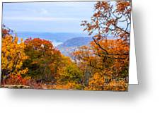 Fall Extreme Greeting Card