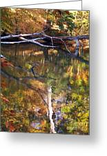 Fall Fallen Greeting Card