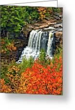 Fall Falls Greeting Card