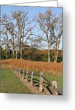 Fall Fence Greeting Card