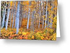Fall Fiesta Greeting Card