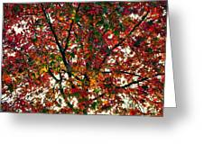 Fall Fire Greeting Card
