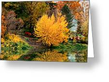 Fall Fireworks Greeting Card