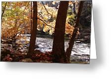 Fall Flows Greeting Card