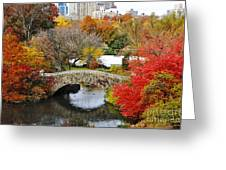 Fall Foliage In Central Park Greeting Card