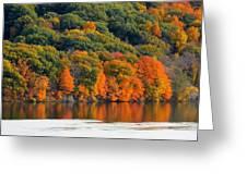 Fall Foliage In Hudson River 14 Greeting Card