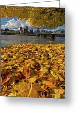 Fall Foliage In Portland Oregon City Greeting Card