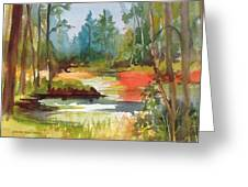 Fall Foliage In Vermont Greeting Card