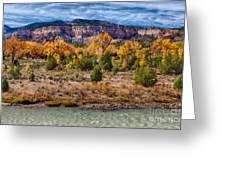 Fall Foliage Near Ghost Ranch Greeting Card