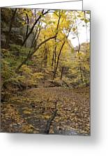 Fall Foliage Number 57 Greeting Card