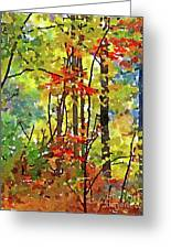 Fall Forest 2 Greeting Card