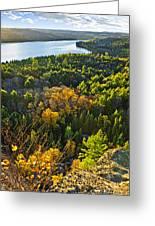 Fall Forest And Lake Top View Greeting Card