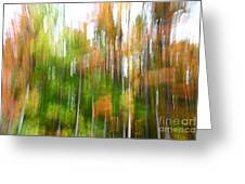 Fall Forest Colors Greeting Card