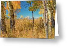 Fall From Oxbow Bend In Grand Tetons Greeting Card