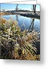 Fall Frost On Grasses Along Nippersink Creek Greeting Card